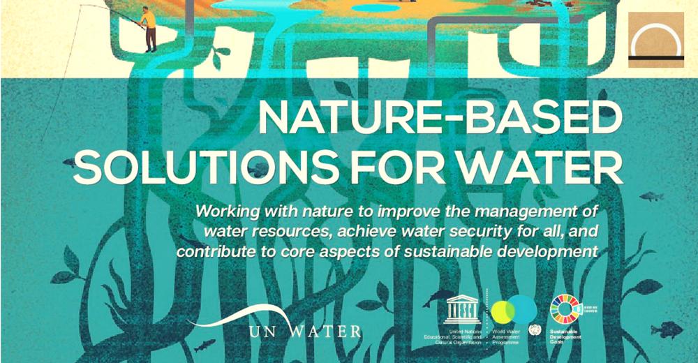 El Informe de WWDR en el Foro Mundial del Agua