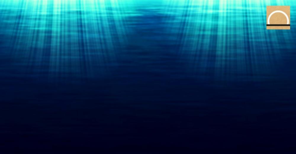 """Thierry Juteau: """"El fondo marino sólo se ha explorado un 5%"""""""