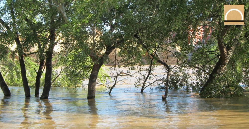 El Ebro vuelve a su cauce después de las crecidas