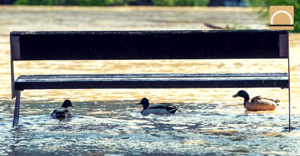 El gobierno estudia las consecuencias de la crecida del Ebro