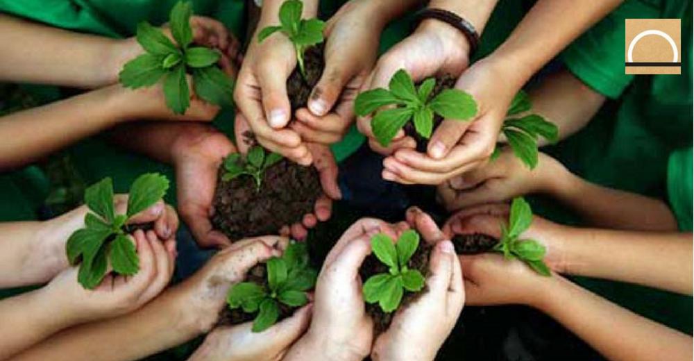 Cuatro proyectos medioambientales españoles han sido premiados por la UE