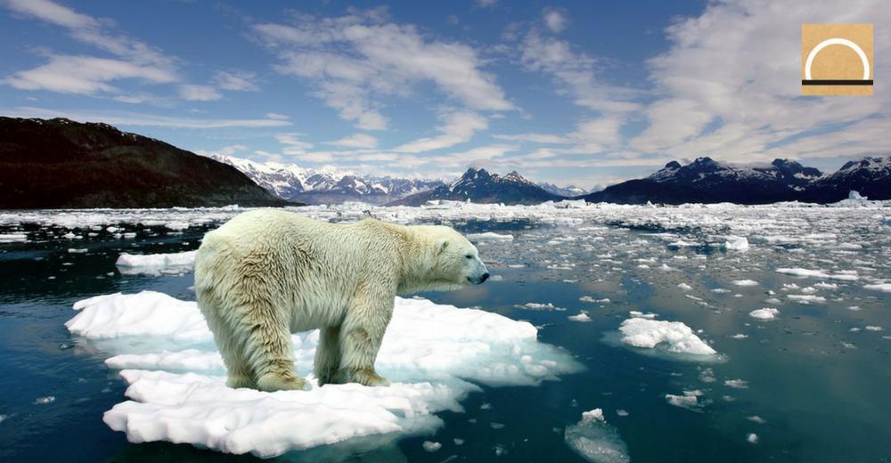 Abren una web oficial para informar de los efectos del cambio climático