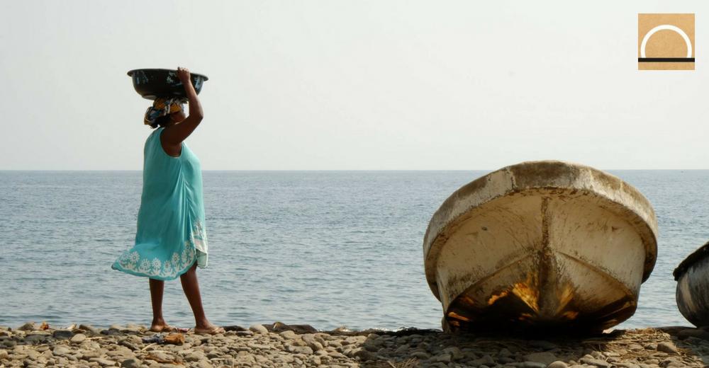 El cambio climático también afectará las migraciones de bancos de peces