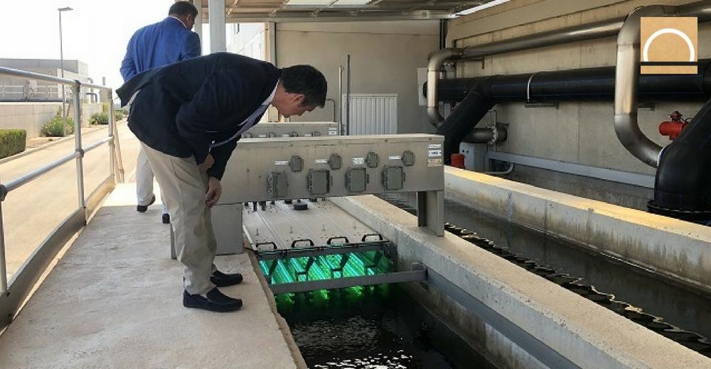 Instalan un sistema piloto de filtrado biológico en Murcia