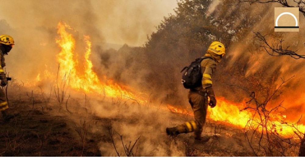 Los incendios forestales descendieron un 61% este año