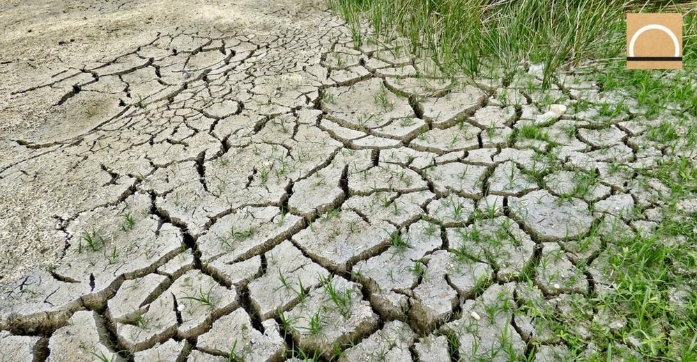 El cambio climático amenaza con transformar los ecosistemas marinos y de agua dulce