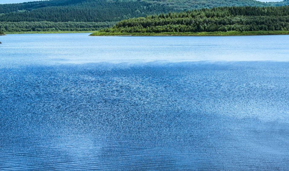 Crece la reserva hidráulica por las últimas precipitaciones