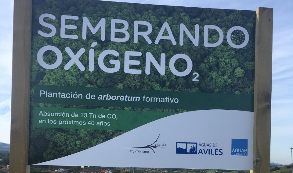 Dos nuevos jardines botánicos para absorber 19 toneladas de  CO2