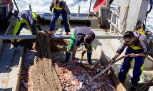 La primera fase de RepescaPlas finaliza con 3.000 kilos de basuras marinas recuperadas