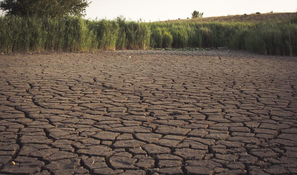En 2050 la mitad de la población sufrirá escasez de agua