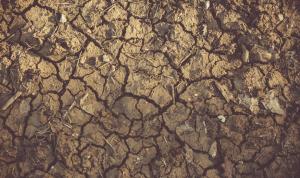 La erosión del suelo compromete la seguridad alimentaria