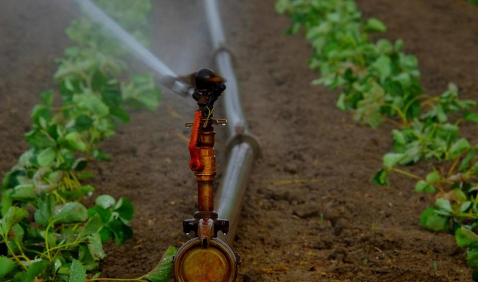 Los regantes rechazan la subida del precio del agua para mejorar su eficiencia