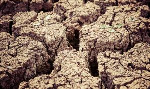 El 75% del territorio español, en peligro de sufrir desertificación