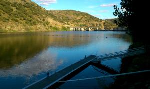 El efecto de las presas sobre los caudales de los ríos provoca un aumento de las especies invasoras