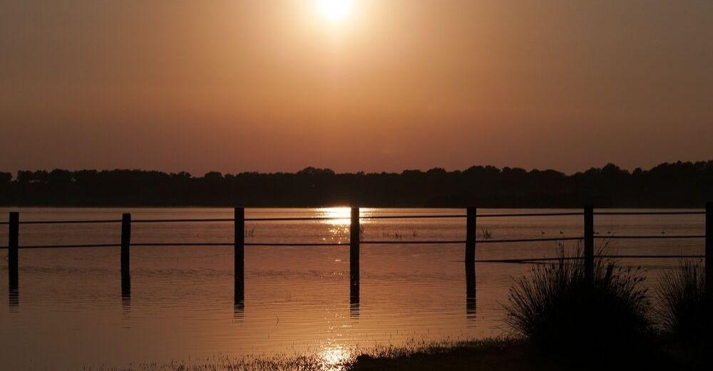 """El parque de Doñana continúa agonizando y está en """"alerta roja"""""""
