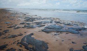 Brasil recoge 100 toneladas de petróleo de sus playas