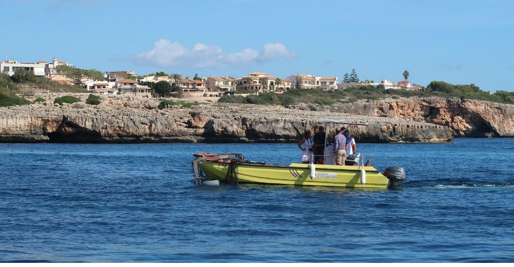 La mitad de los residuos recogidos este verano en Mallorca eran plásticos