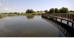 Descontaminar un acuífero biológicamente