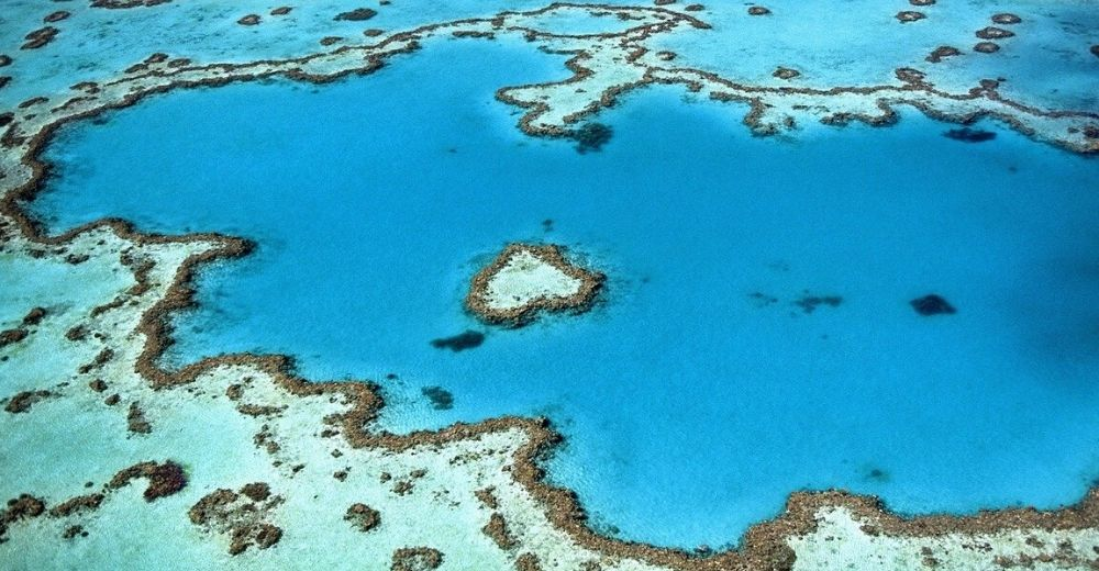 La Gran Barrera de Arrecifes de Australia se tiñe de blanco